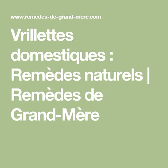 Vrillettes Domestiques Remedes Naturels Remedes De Grand Mere Remede De Grand Mere Remede Remedes Naturels