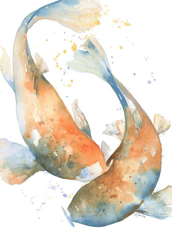 Japanese koi watercolor print and koi on pinterest for Blue and orange koi fish