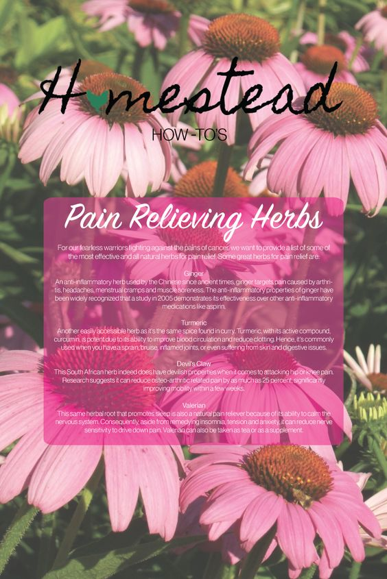 Pain relief: the natural way. From our table to yours!