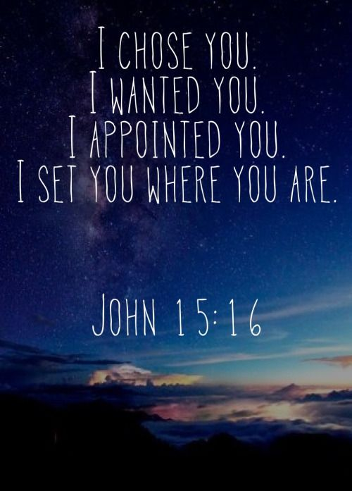 "John 15:16-17 ~ ""You did not choose me, but I chose you and appointed you so that you might go and bear fruit—fruit that will last—and so that whatever you ask in my name the Father will give you. This is my command: Love each other."":"