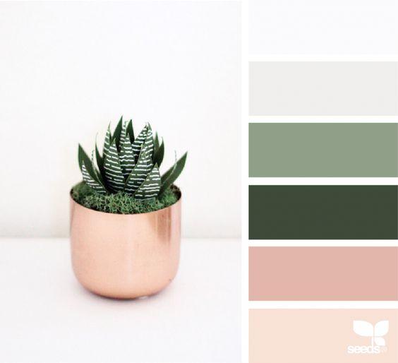 Paper Succulents | Design Seeds
