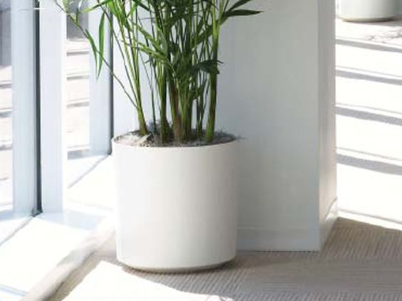 Eco Friendly Ceramic Cylinder Planter From Indoor Flower 640 x 480