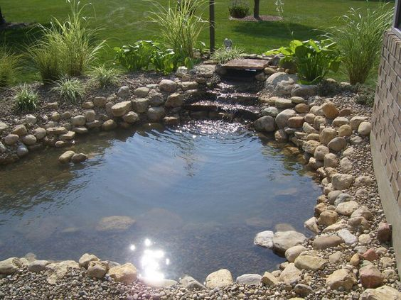 Larger pond view