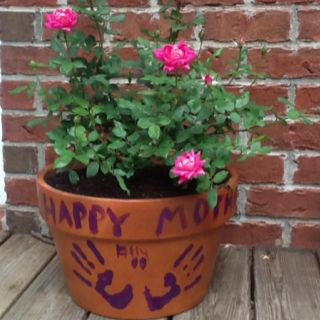 Rose bush with handprints for Mothers Day. Love!