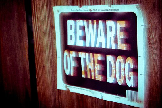 Beware the Dog by Jeremiah  Policky, via 500px