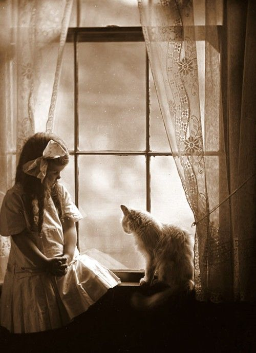 window: Kitty Cat, Vintage Photos, Vintage Photographs, Vintage Photography, Black White, Marjorie Sholes, Early 1900, Young Girl, Vintage Cat