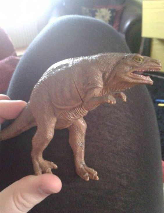 "My nephew has a toy dinosaur which we call ""sneaky dinosaur"" because he looks... // tags: funny pictures - funny photos - funny images - funny pics - funny quotes - #lol #humor #funnypictures"
