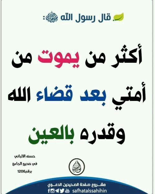 Pin By Malaki Khatib On شيباني Islamic Phrases Wisdom Quotes Life Islam Facts