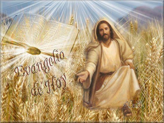 *Donne-nous notre Pain de ce jour (Vie) : Parole de DIEU *, *L'Évangile et le Livre du Ciel* 2d13f2d1f4ad2f5b198340fcd9a977c1