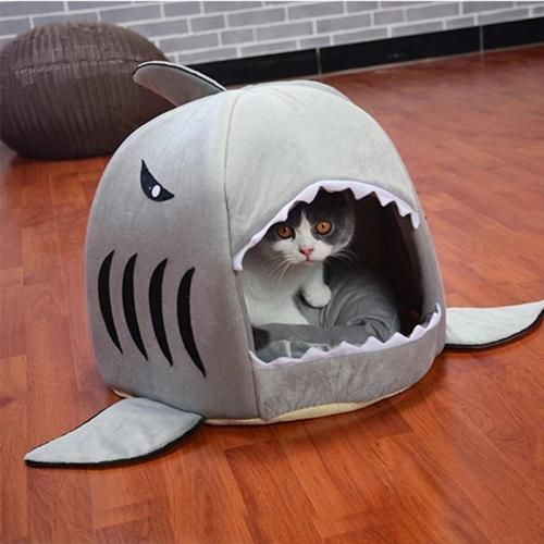 Pet Shark Bed For Cats Dogs 25 90 Free Shipping Worldwide Shark Dog Bed Dog Pet Beds Cat Bed