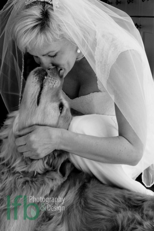 Bride and Golden