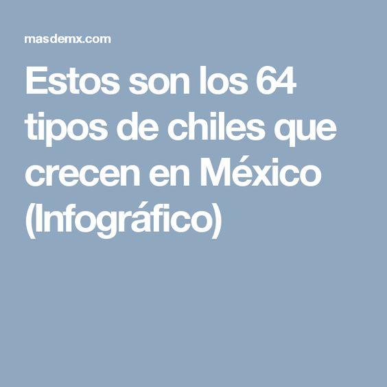 Estos son los 64 tipos de chiles que crecen en México (Infográfico)
