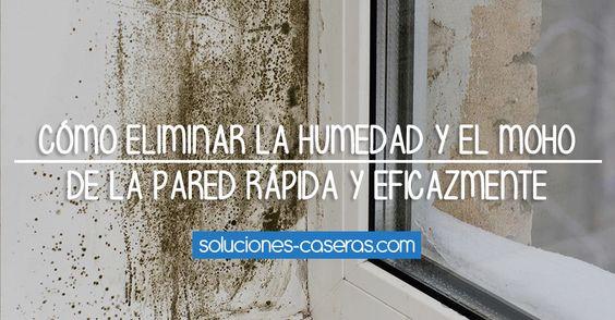 Como quitar humedad pared stunning como quitar humedades - Quitar humedades pared ...