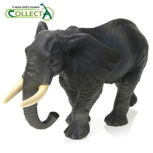 African Elephant Toys For Boys : Collecta animal toy figure african elephant