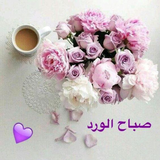 صباح الورد أحبتي