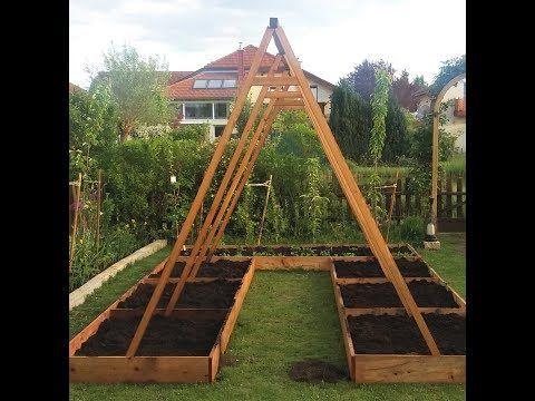 Gurken Gurkenpflanzen Cucumis Sativus Anbau Und Pflege Gewachshaus Pflanzen Garten Pflanzen Garten