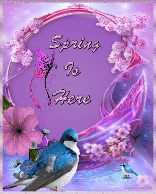Spring is Here spring flowers animated season happy spring spring greeting…