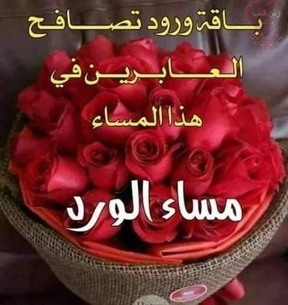 Pin By فلسطينية ولي الفخر On لاجمل عيون بتقرأ مساء الخير Birthday Cake Cake Good Morning Gif