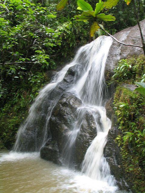 5 THINGS TO DO INFIJI | www.frontiergap.com | #fiji #volunteer #thingstodo #travel