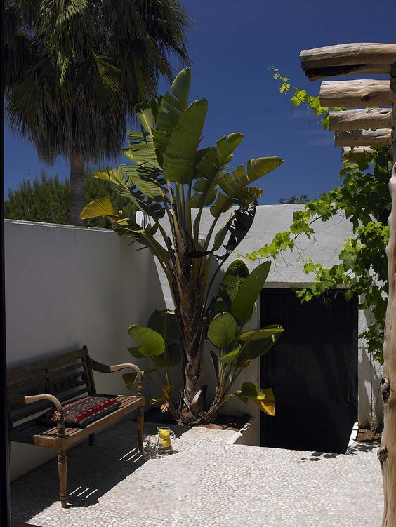 7 BLAKSTAD ERIKA Ibiza 2011CF069528: