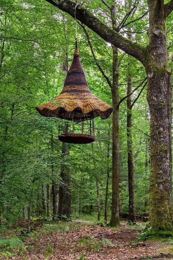 Dans le bois de la Bastide, Limoges