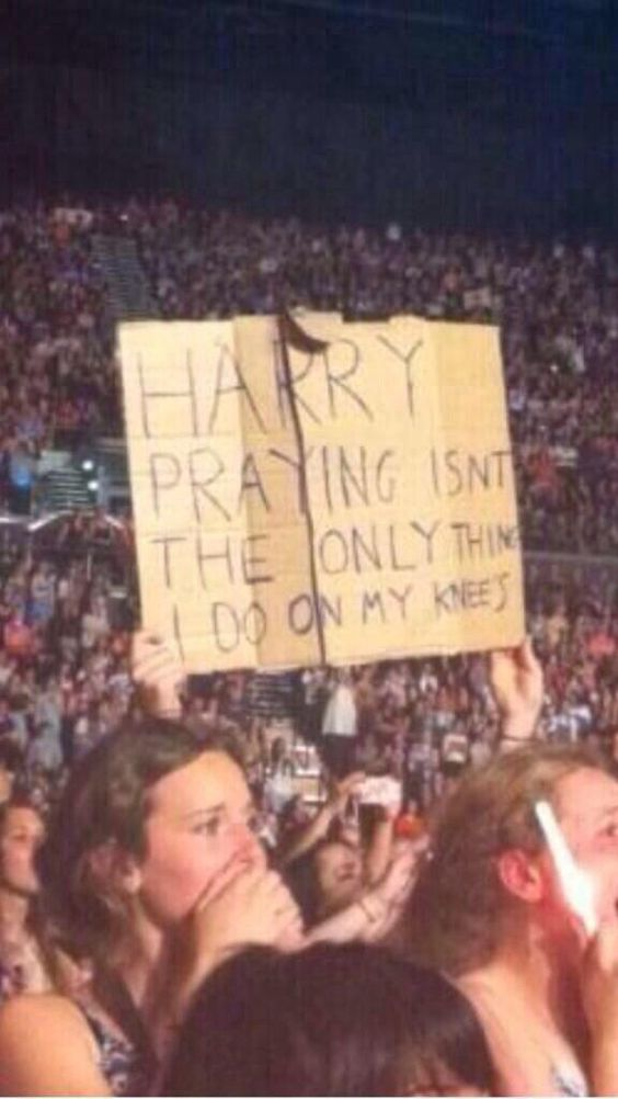 Me at my one direction concert this past July