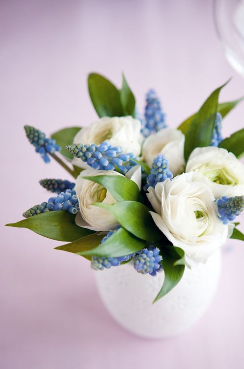 blue and white, muscari, ranunculus This is a must make!  Looks so easy.  Famous last words...