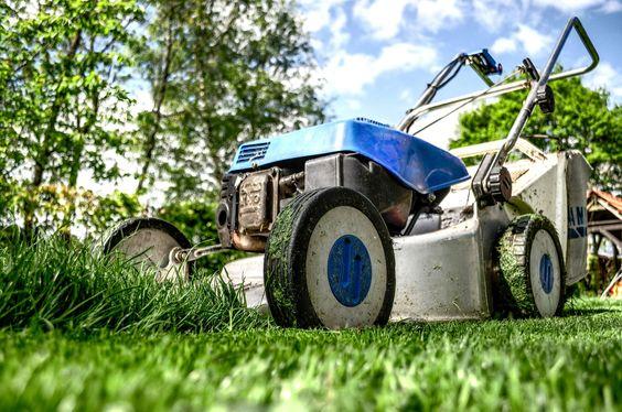lawn-562552_1920-lawnmower