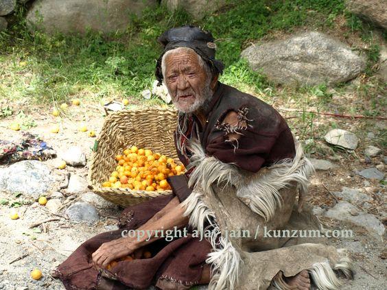Ajay Jain - Apricot Man near Batalik in Ladakh