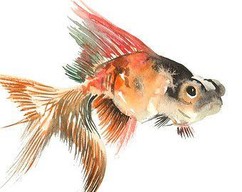 Poisson rouge aquarelle originale peinture 9 x 12 dans for Aquarium poisson rouge dessin