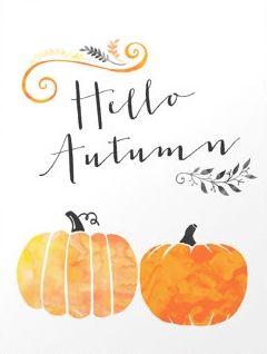 Hello Autumn.