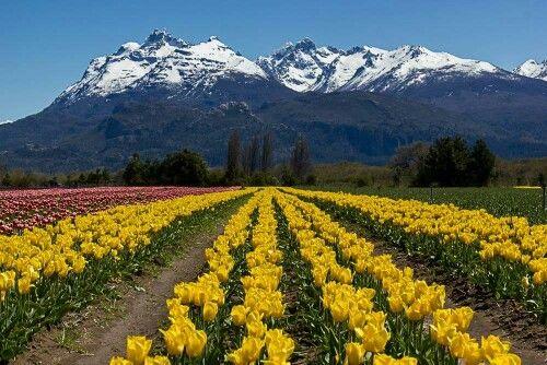 Trevelin. Chubut. Patagonia. Argentina