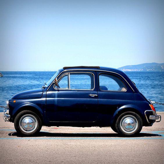Fiat Cinquecento, Fiat 500 And Blue On Pinterest