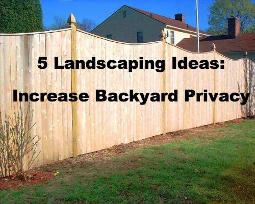 5 landscaping ideas to increase backyard privacy privacy for How to improve your backyard