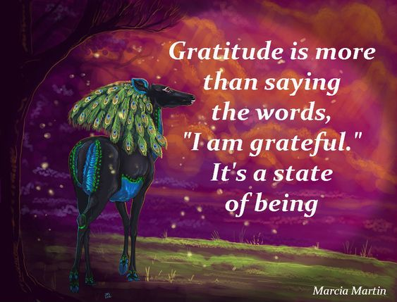 "Gratitude is more than saying the words, ""I am grateful."" It's a state of being. Abundant blessings x:"