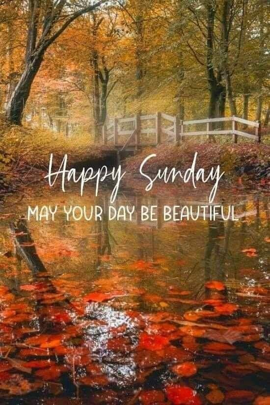 Pin By Leanna Mclean On Fall Sayings And Graphics Good Morning Happy Sunday Good Morning Sunday Images Happy Sunday Quotes