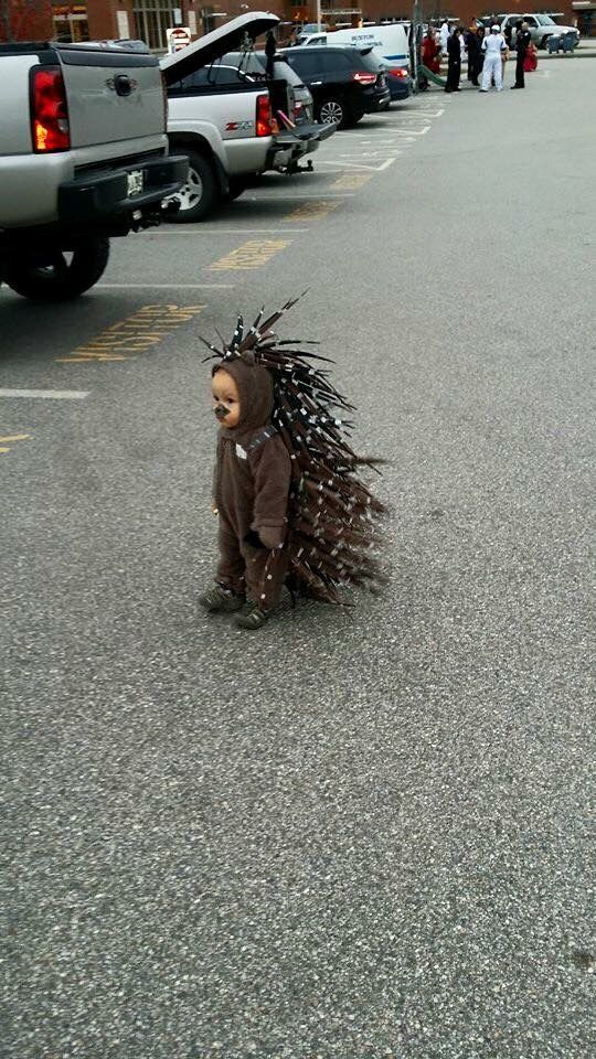 This kid as a porcupine. | 27 Kids Who Totally Nailed This Halloween Thing Oh my goodness, when i have a kid, MY CHILD WILL WEAR THIS!!!!!: