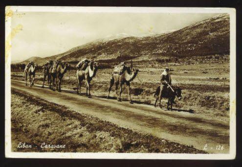 LEBANON ~ CAMEL CARAVAN & ITS DRIVER RIDING ON DONKEY ~ RPPC ~ used c 1950's.         Propiedad y cortesía de Archivos Rodríguez LLC, archivofotograficodepuertorico.com