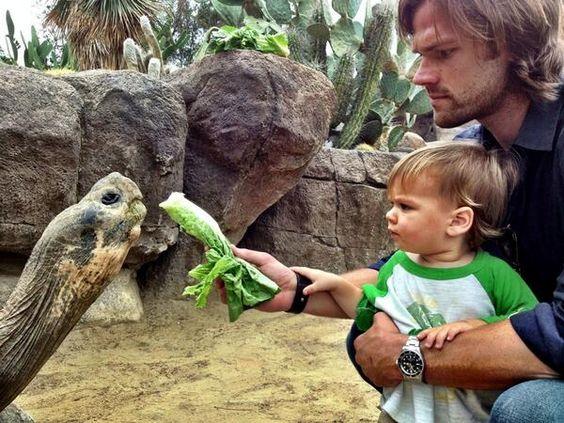 Jared Padalecki zoo