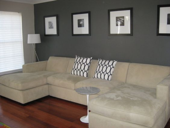 Charcoal Grey Wall, Living Rooms Design