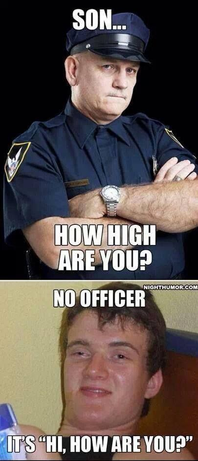 I don't condone smoking weed, but a victimless crime is a victimless crime.  'Nuff said