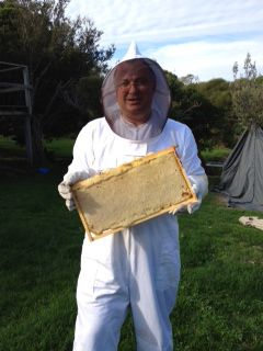 Beekeeping at Somers