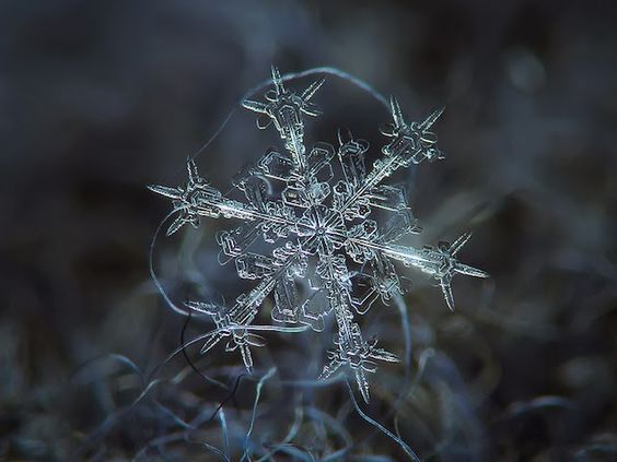 10 simply Amazing pictures of snowflakes: