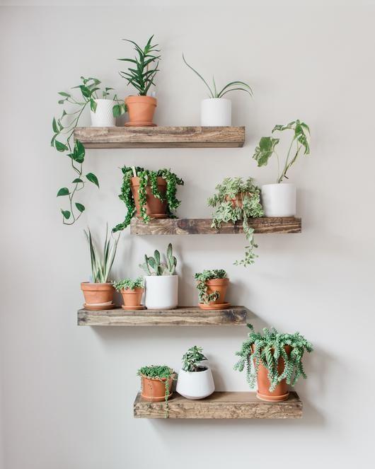 Home decor - 46 Amazing Wall Plants Decor For Cozy Living Room (3) Possible Decor homedecormodern  