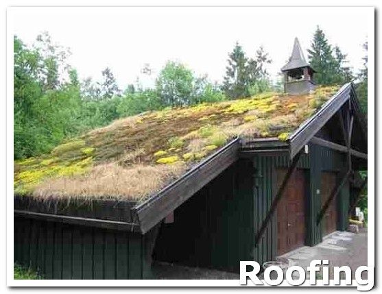 Roofingmaterials Having A Sound Stable Roof Is A Critical Priority For Any Homeowner However Not Everyone Understands What I Green Roof Diy Roofing Roofing