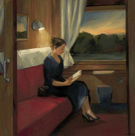 Sunset On The Train By Sally Storch
