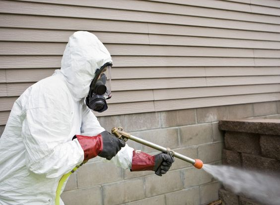 Image result for First Thing: Pest Control