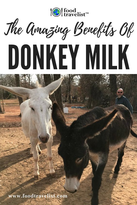 Donkey Milk? What!?! We had never heard of it before either. Take a quick read of how donkey milk is helping many people with autoimmune deficiencies. You won't believe it. #donkeymilk
