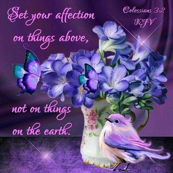 Colossians 3:2 KJV
