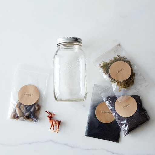 DIY Terrarium Kit on Provisions by Food52